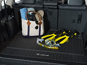 2019 Lexus GX Accessory: All-Weather Cargo Mat