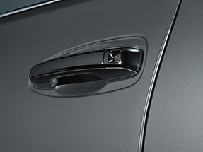 Lexus GX Accessory – DOOR EDGE GUARDS