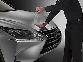 2019 Lexus RX Accessory: Paint Protection Film