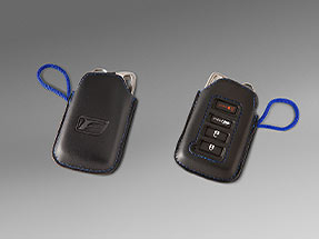 Lexus RX Accessory: Key Gloves