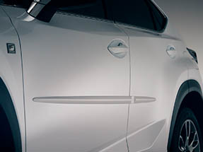 The available body side moldings shown on the 2020 NX.
