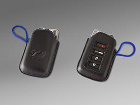 Lexus IS Accessories Thumbnail