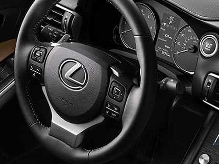 Image of POWER TILT-AND-TELESCOPIC STEERING WHEEL