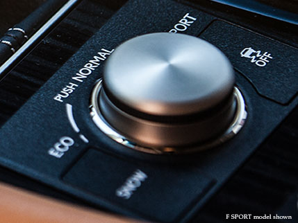 PERFORMANCE DRIVING MODES