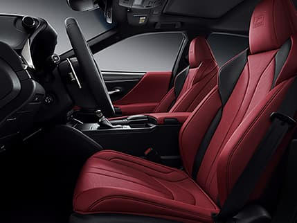 Image of Exclusive bolstered sport seats