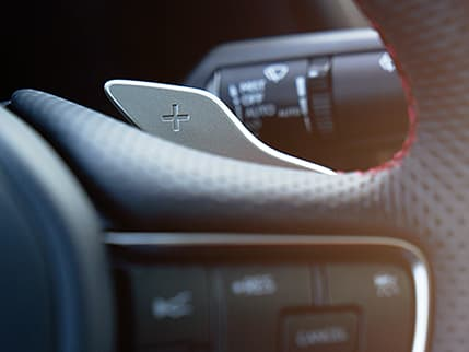 Image of Paddle shifters