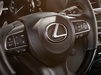 Image of STEERING-WHEEL-MOUNTED CONTROLS