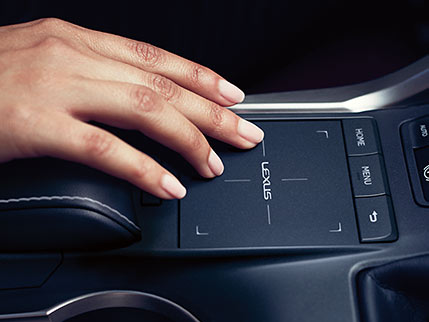 Image of REMOTE TOUCHPAD